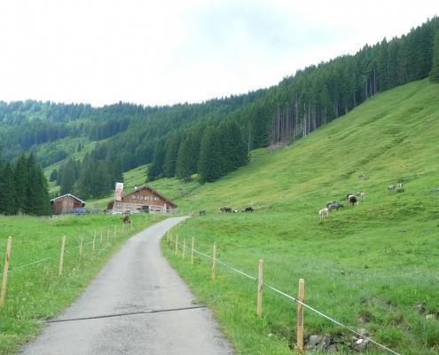 Alpe Zunkleiten